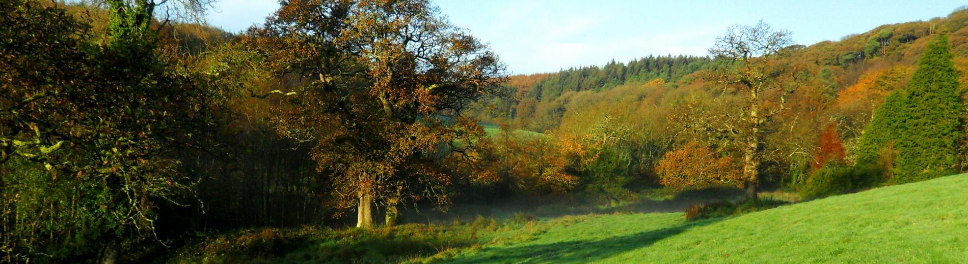 Spreacombe Valley at Autumn