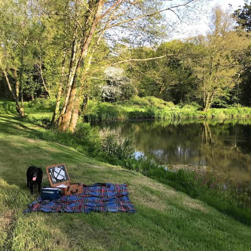 Black dog on picnic blanket by our private pond.