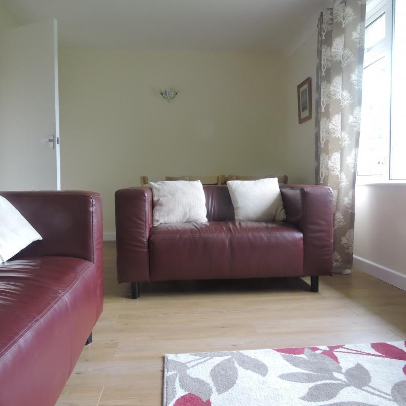 lounge, dog friendly.