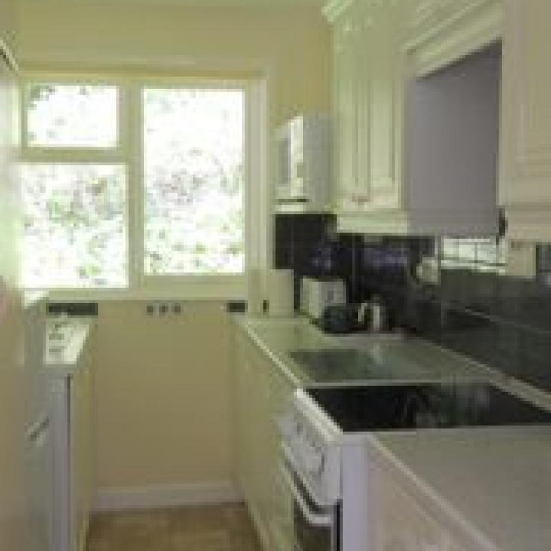 Kitchen, Begonia