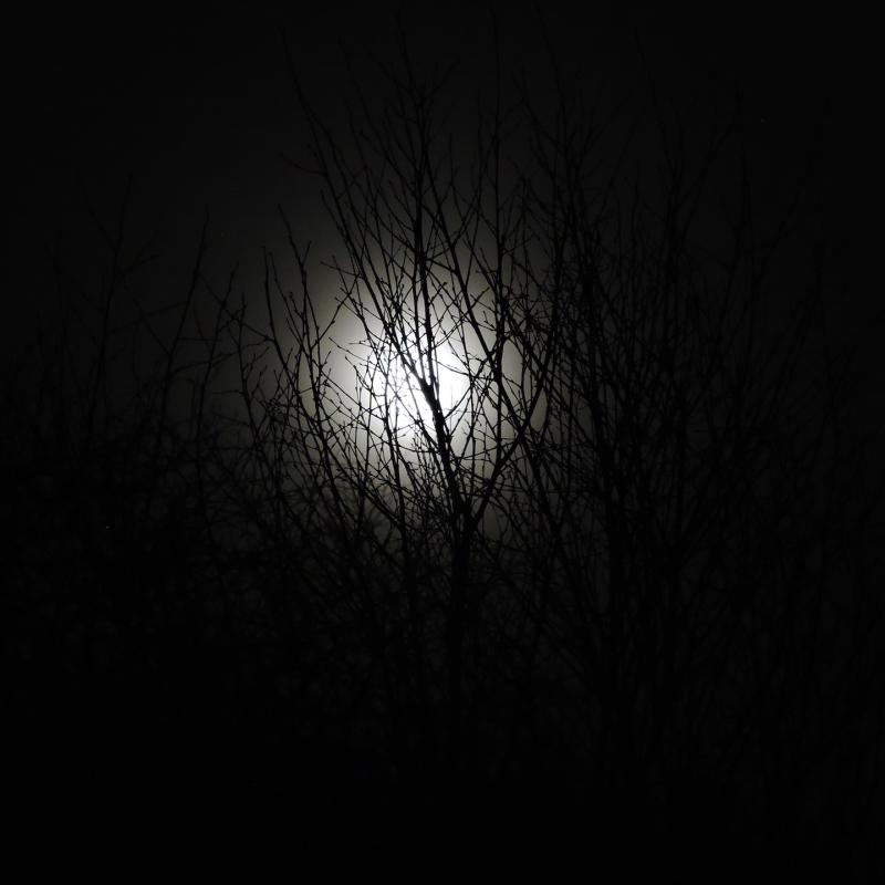 Jan 2020 wolf moon photographed at Spreacombe